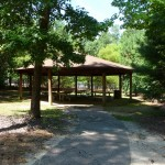 picnic gazebo